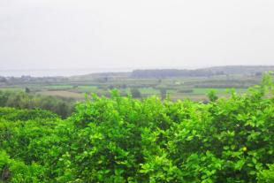 Rif. 263 – terreno vicino Oasi di Vendicari